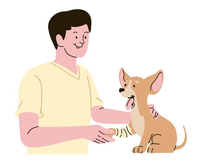 28.3.2021 – Praxisworkshop Krankheitsprophylaxe, Notfälle und 1. Hilfe beim (Schul)Hund